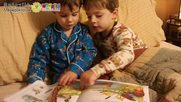 A jó mese felkelti a gyermek érdeklődését, ugyanakkor nevelő hatású is